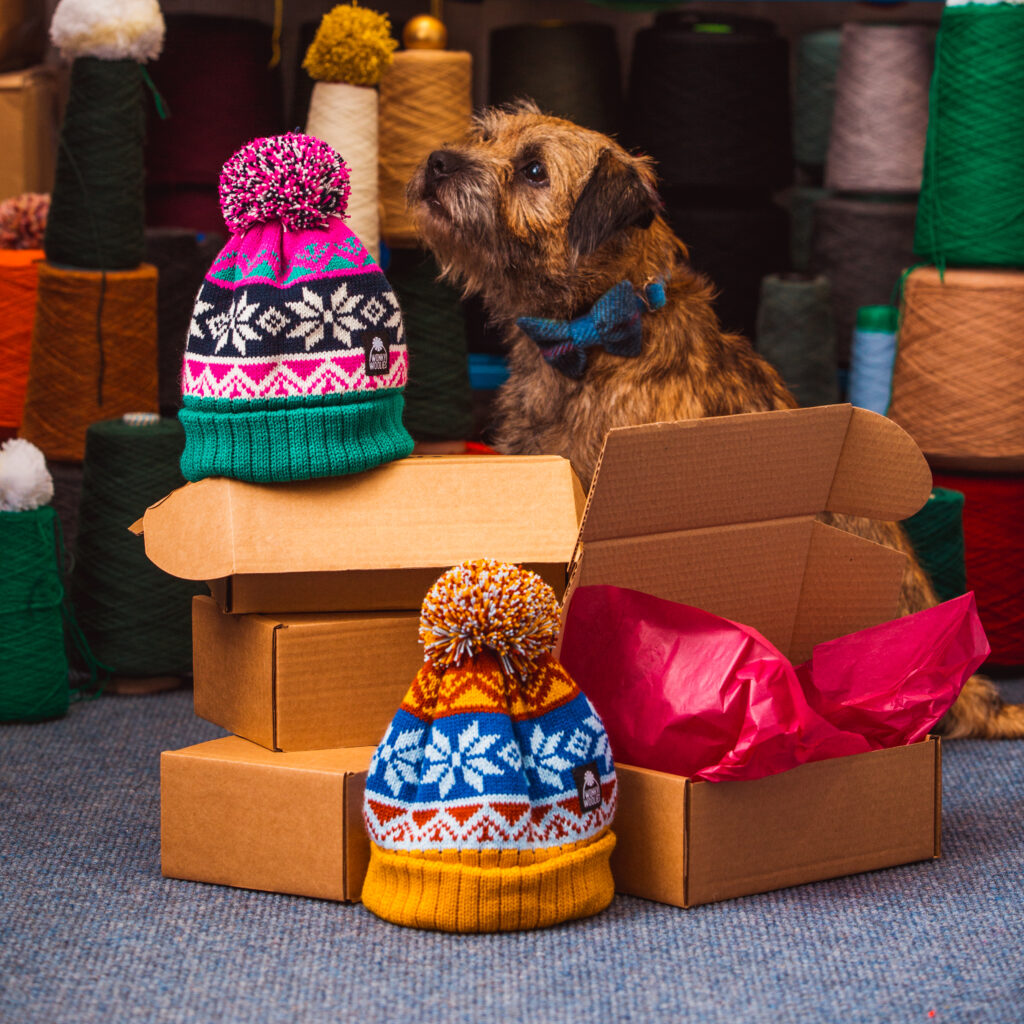 Ruaridh the Border Terrier wearing a bow tie, sitting in amongst Wonky Woolies hat.