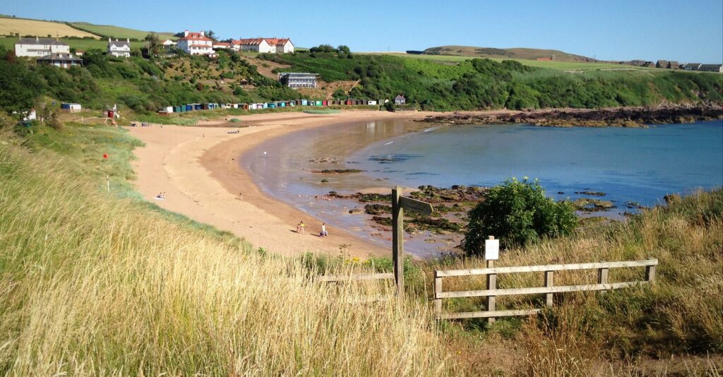 An image of Coldingham beach, showing the dunes and colourful beach huts.