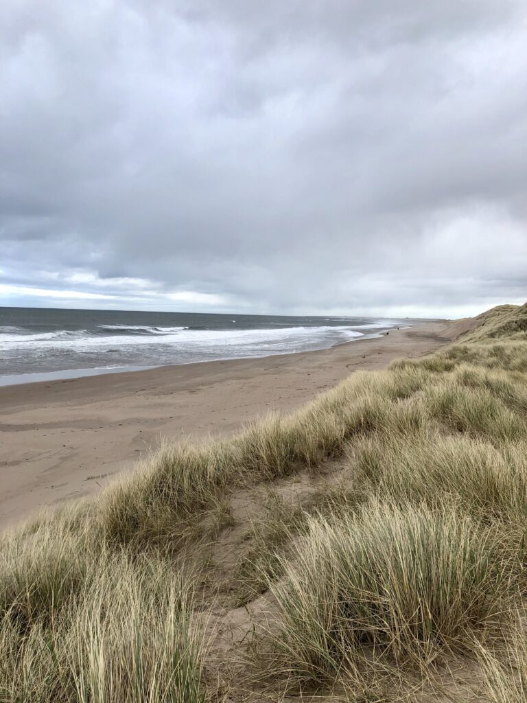 A view of Cheswick beach from the top of the dunes.