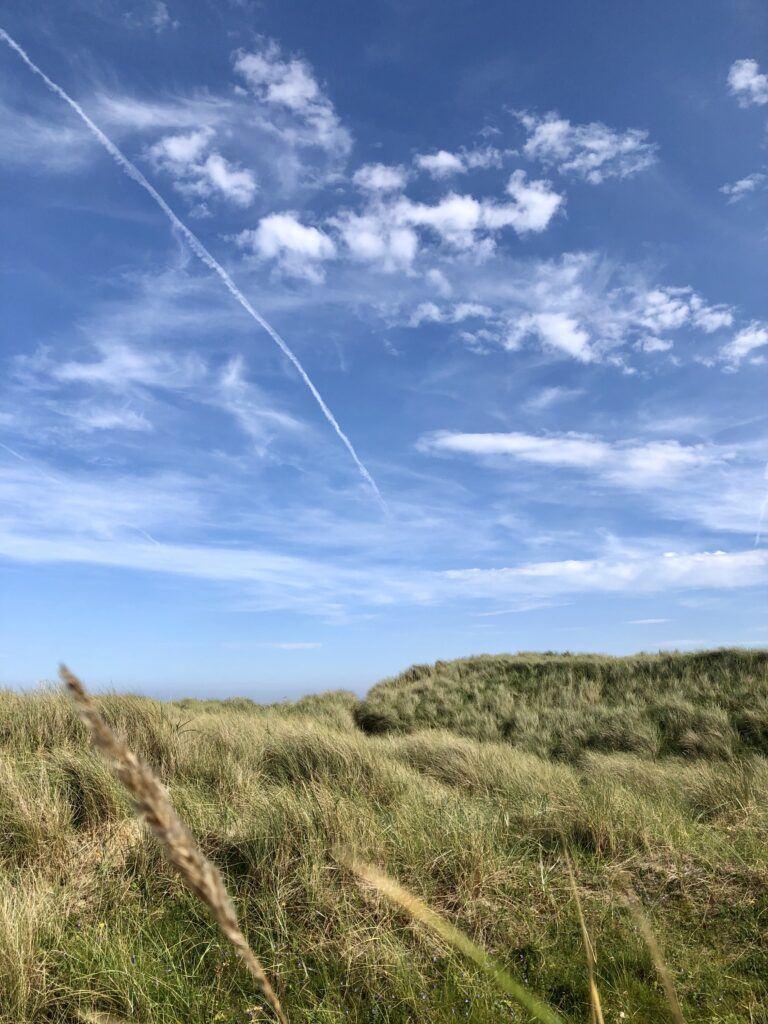 The sand dunes at Cheswick beach.
